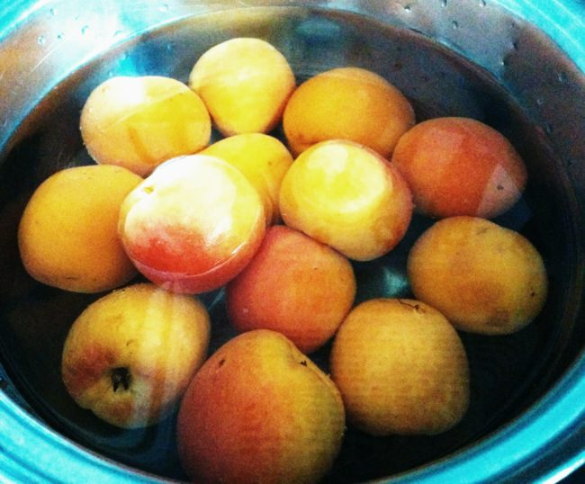 Apricots in hot water - Ultimate low sugar apricot jam recipe - SunCakeMom