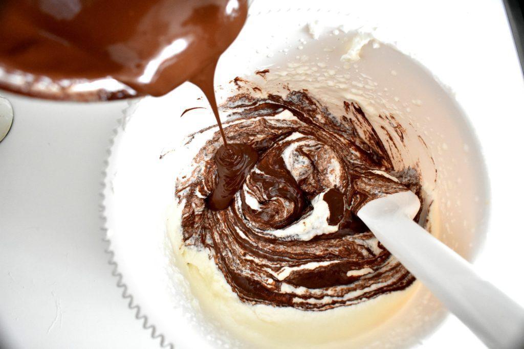 Chocolate-coconut-ice-cream-process-5-SunCakeMom